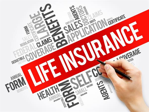 Term Insurance Plan Policy